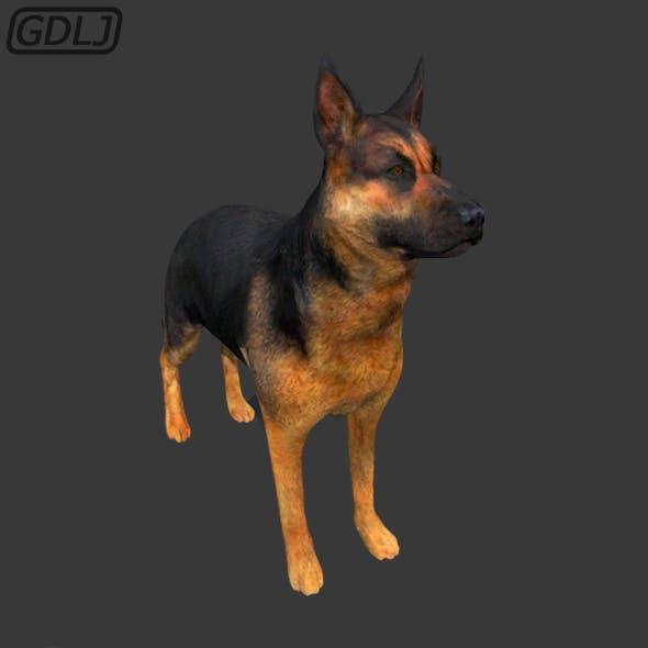 DOG - 3DOcean Item for Sale