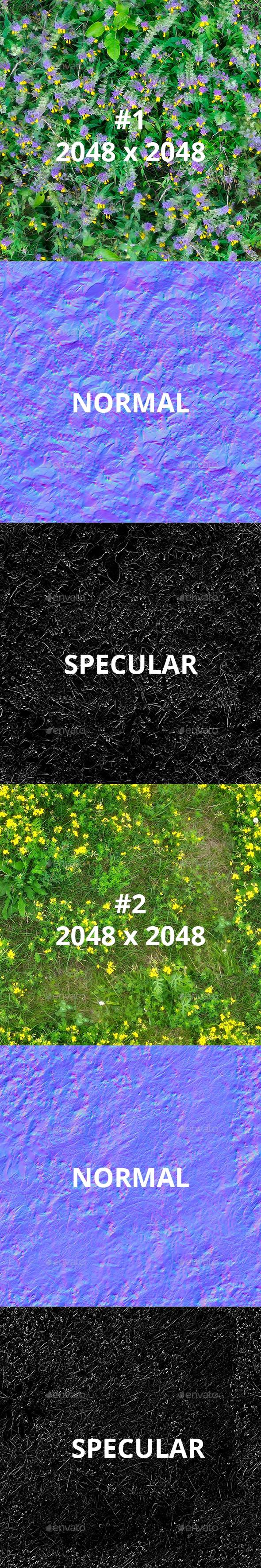 2 Field Flowers - 3DOcean Item for Sale