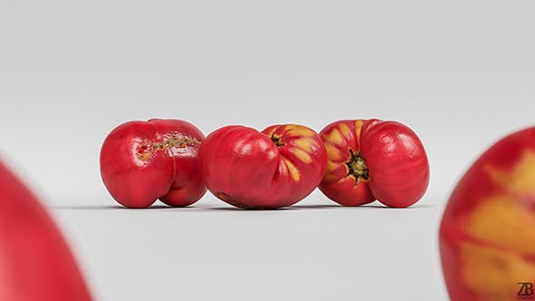 Tomato 007 - 3DOcean Item for Sale