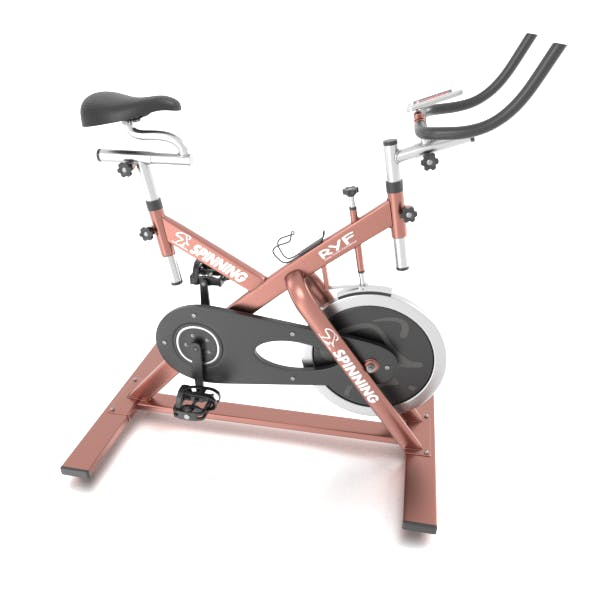 Stationary Spinning Bike