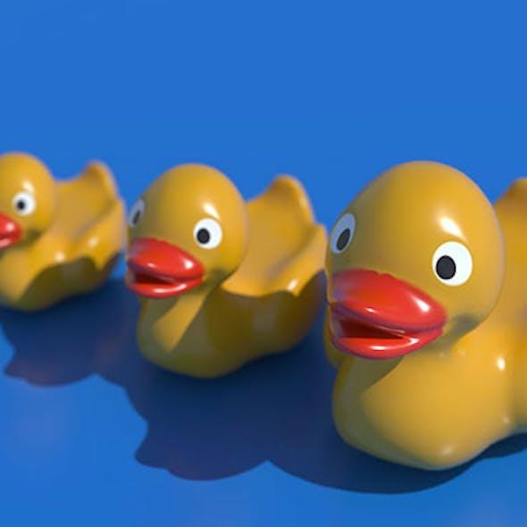 Plastic Duck Toy
