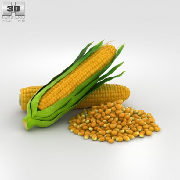 Corn - 3DOcean Item for Sale