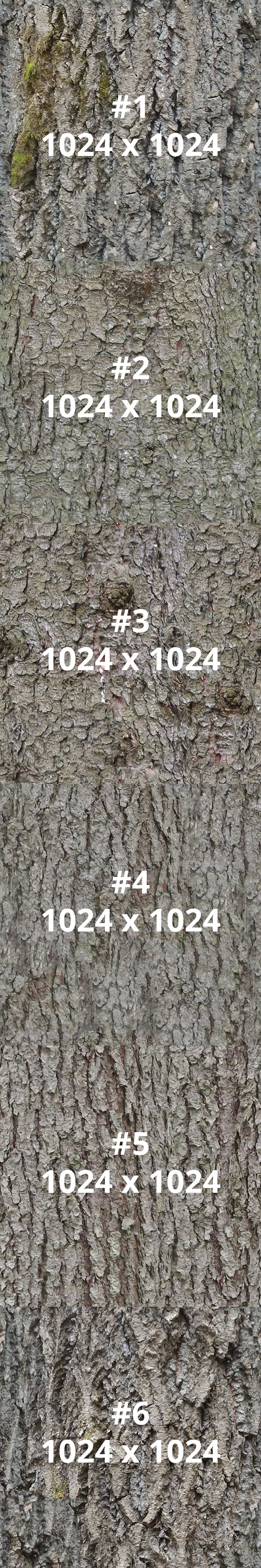Pack of 6 Different Bark Textures - 3DOcean Item for Sale