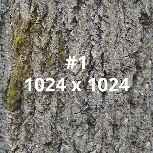 Pack of 6 Different Bark Textures