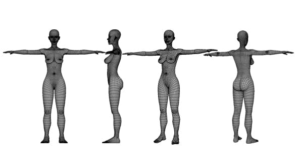 Human Female High Poly Base Mesh - 3DOcean Item for Sale