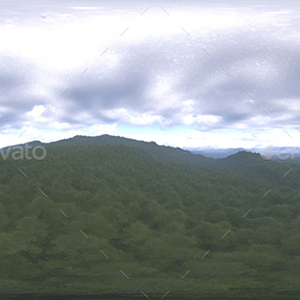 Late Afternoon Forest HDRI Sky