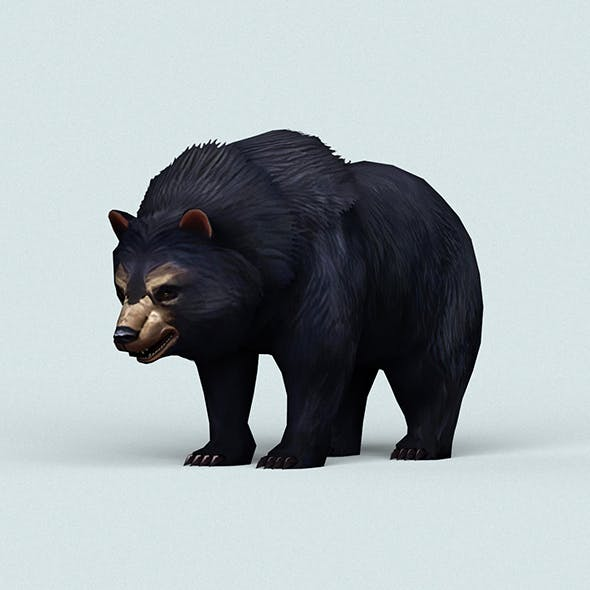 Wild Bear - 3DOcean Item for Sale