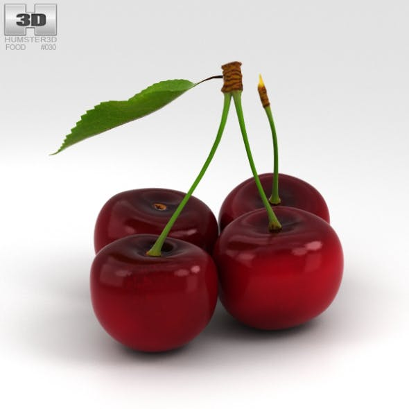 Cherry - 3DOcean Item for Sale