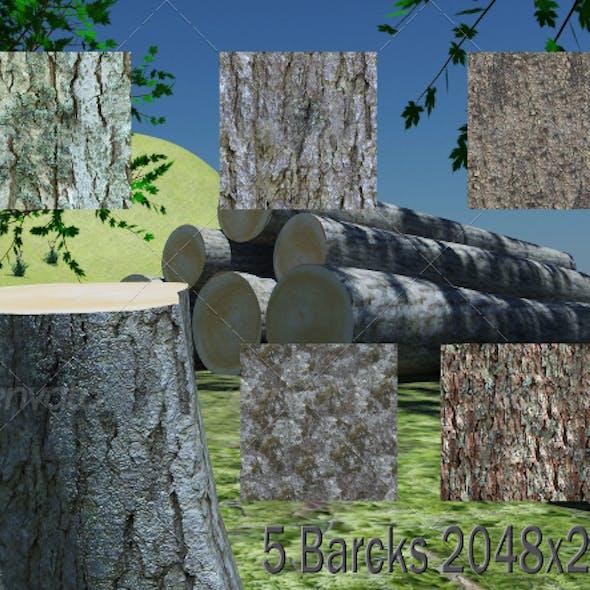 5 Barcks Texture