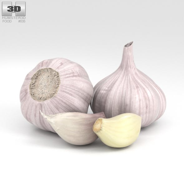Garlic - 3DOcean Item for Sale