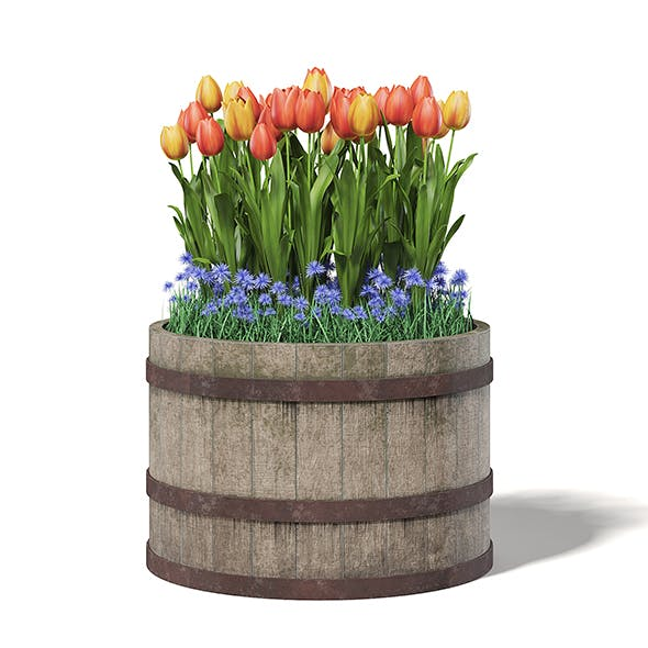 Barrel with Flowers 3D Model - 3DOcean Item for Sale