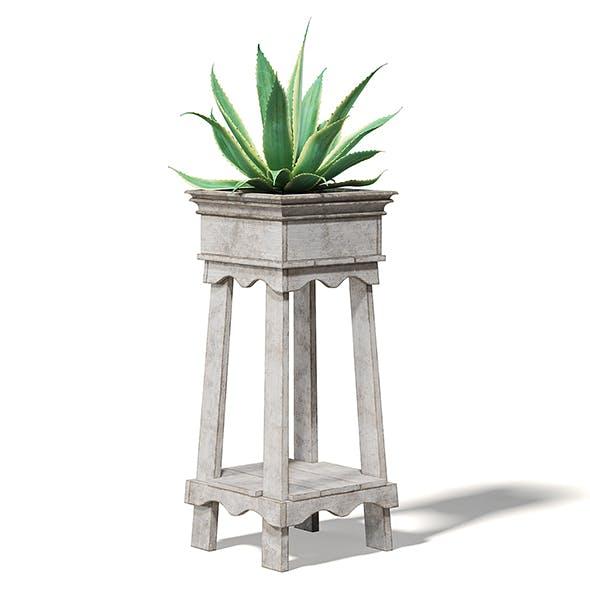 Aloe in Wooden Planter 3D Model - 3DOcean Item for Sale