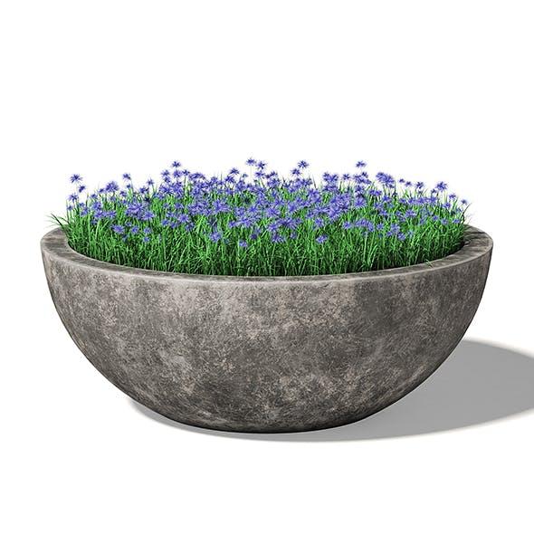 Concrete Planter 3D Model - 3DOcean Item for Sale