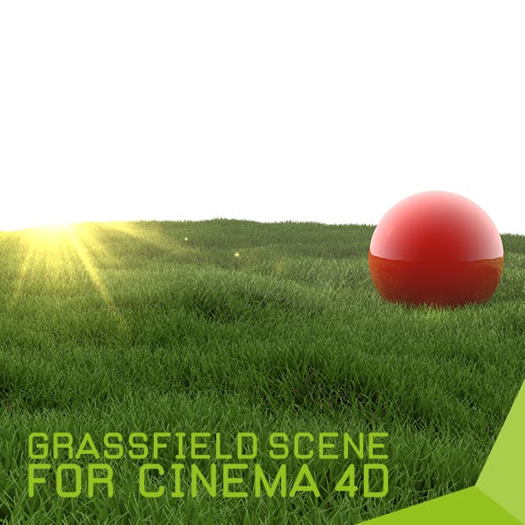 grassfield scene for cinema 4d