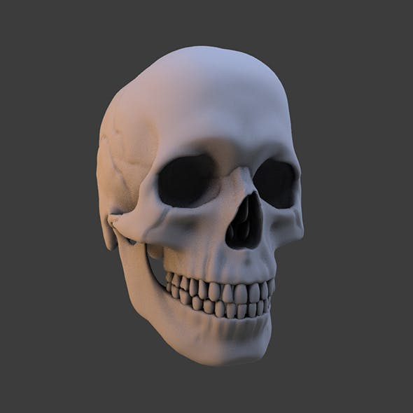 High Poly Skull