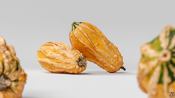 Pumpkin 001 - 3DOcean Item for Sale