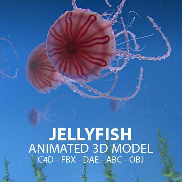 Jellyfish Animated 3D Model