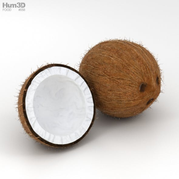 Coconut - 3DOcean Item for Sale