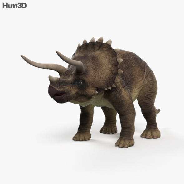 Triceratops HD