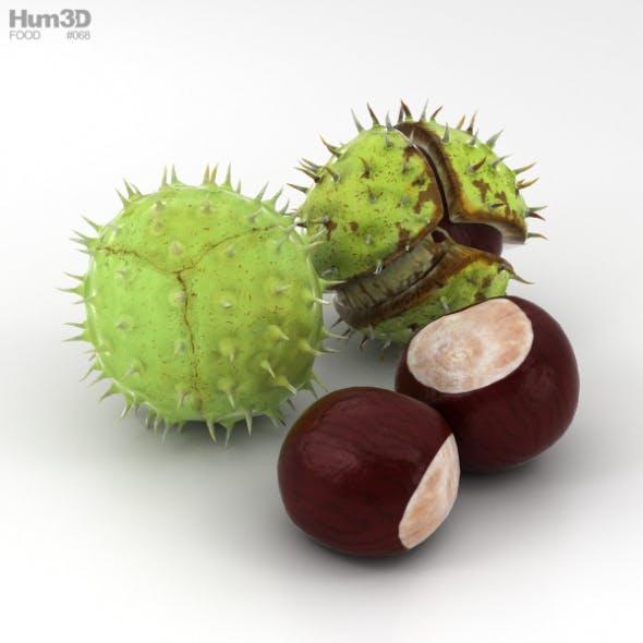 Chestnut - 3DOcean Item for Sale
