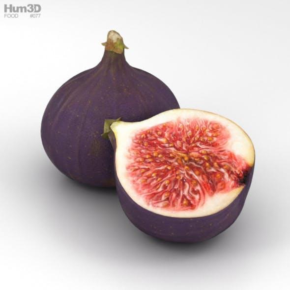 Fig - 3DOcean Item for Sale