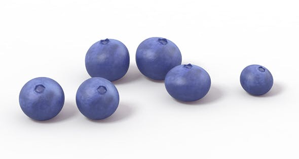 Blueberry Blueberries - 3DOcean Item for Sale