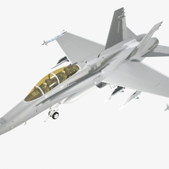 FA 18D Hornet Military Fighter Jet Airplane
