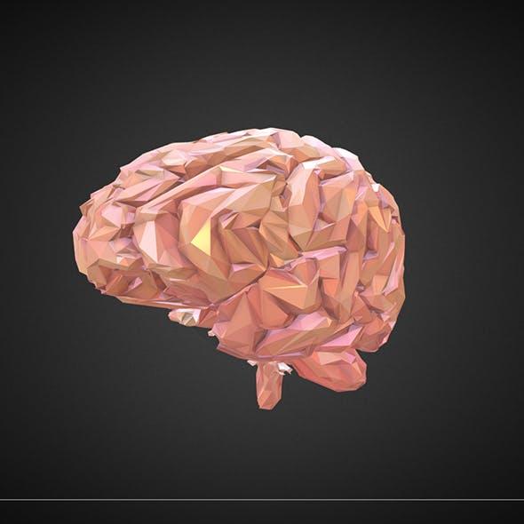 brain_color_1 - 3DOcean Item for Sale