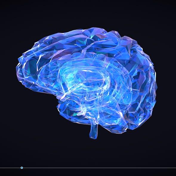brain_color_3 - 3DOcean Item for Sale