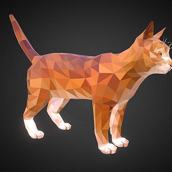 cat 01 color  Orange