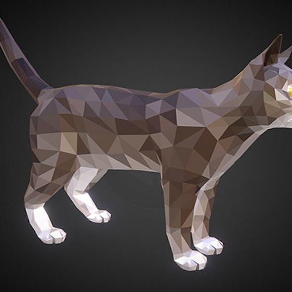 cat 01 color grey