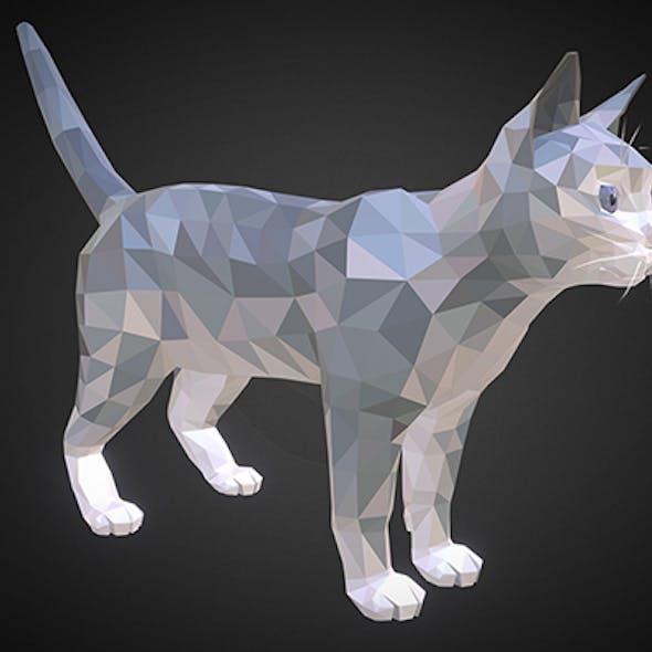cat 01 color grey light