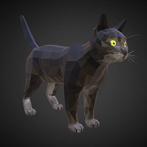 cat 01 color black