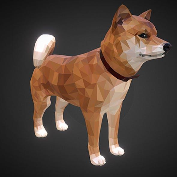 dog_01_ Orange
