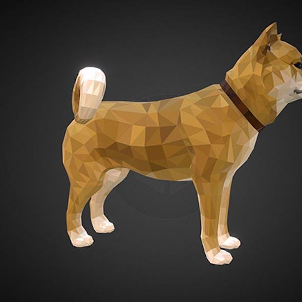 dog_01_yellow