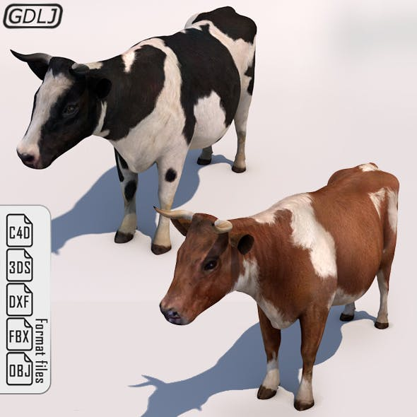Cow - Low Poly & High Ploy - with - Sound effects