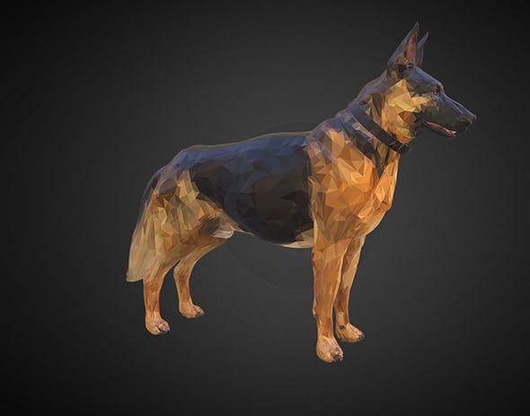 shepherd german - 3DOcean Item for Sale