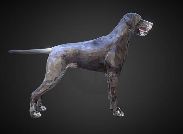 dog kurtshaar grey - 3DOcean Item for Sale