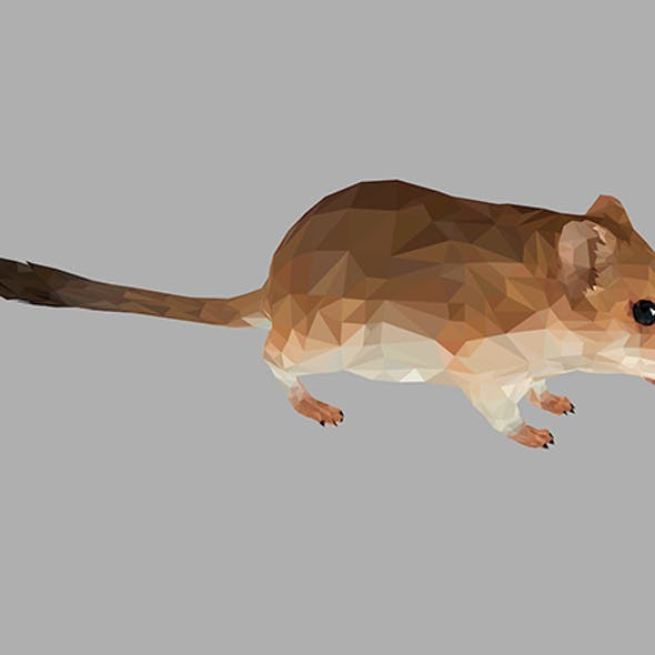 Sand Mouse