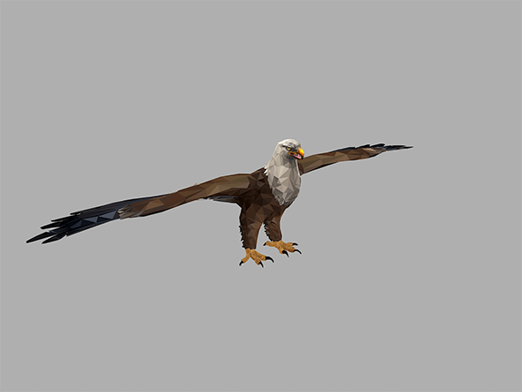 low poly art Bald Eagle Bird - 3DOcean Item for Sale