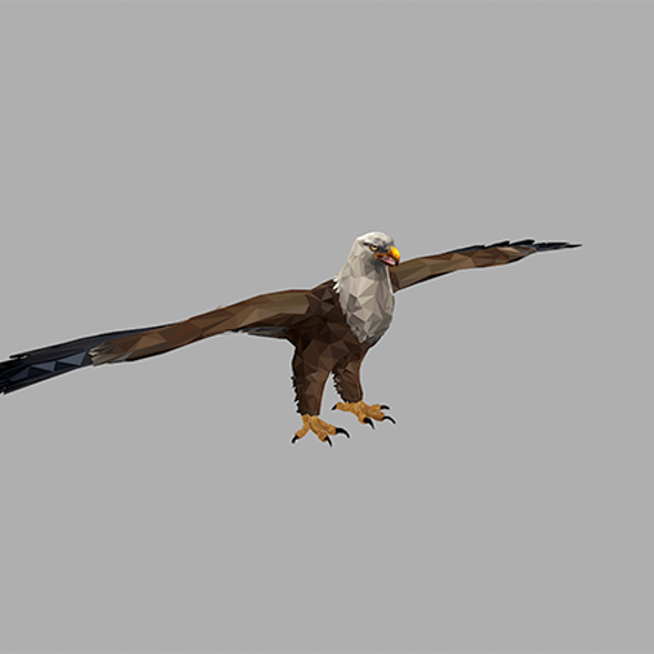 low poly art Bald Eagle Bird