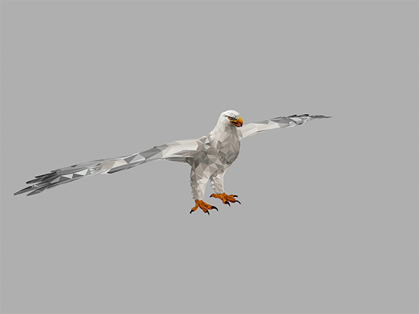Low Polygon Art White Eagle Bird - 3DOcean Item for Sale