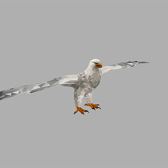Low Polygon Art White Eagle Bird