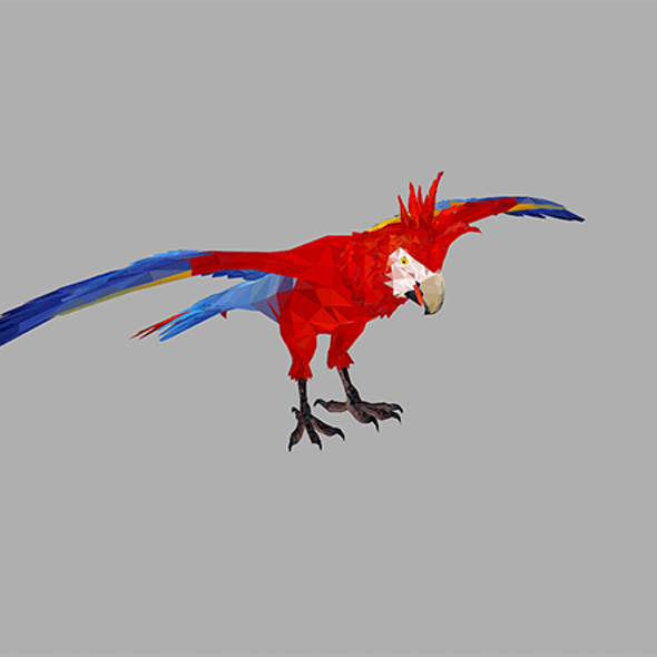 low poly art Red Parrot Bird