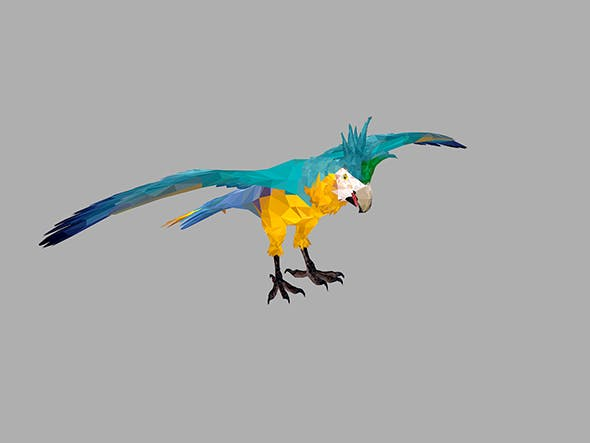 Low Poly Art Blue Parrot Bird - 3DOcean Item for Sale