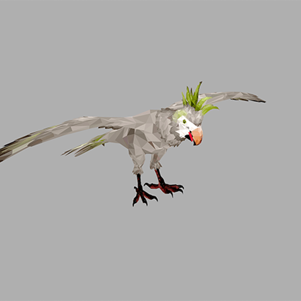 Low Poly art Parrot Bird