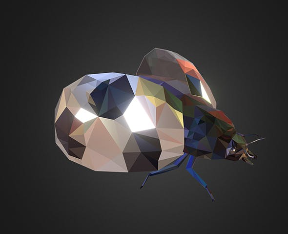 Bug Ladybug White Low Polygon Art Insect - 3DOcean Item for Sale