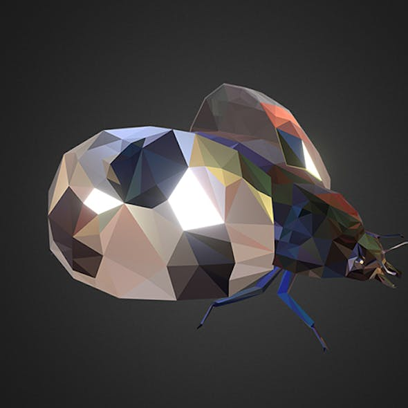 Bug Ladybug White Low Polygon Art Insect