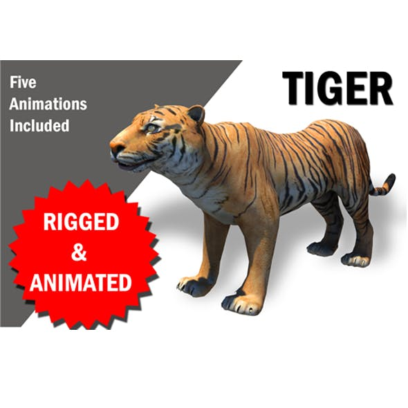 Bengol Tiger Rigged and Animated 3D model