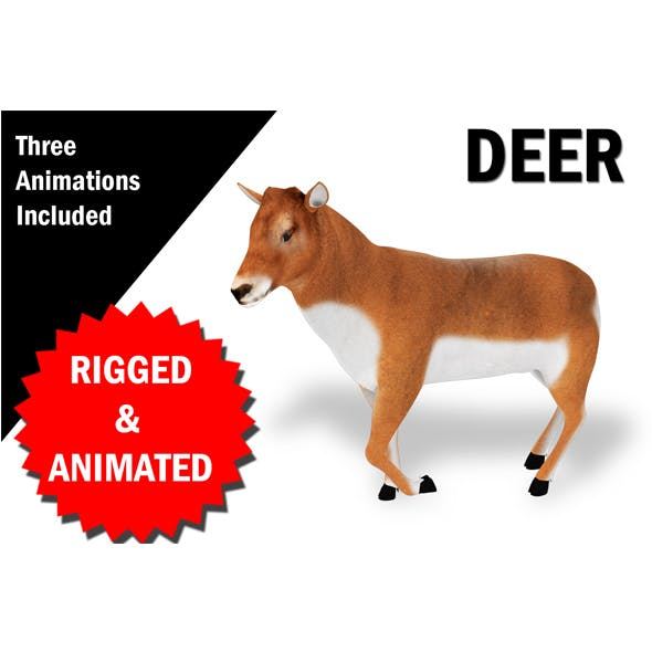 Deer Rigged and Animated 3D model